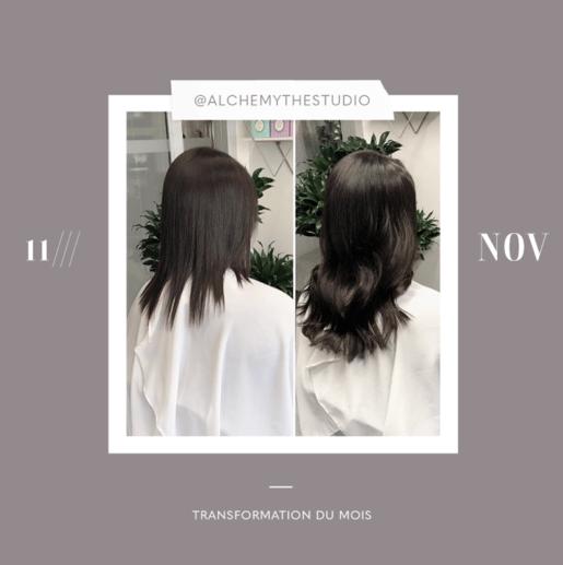 transformation des extensions de cheveux du mois: novembre