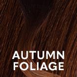 fashion shade autumn foliage