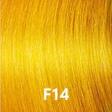 fashion shade f14