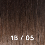 Bronde shades 1b05