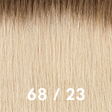 Rooted shades 68&23