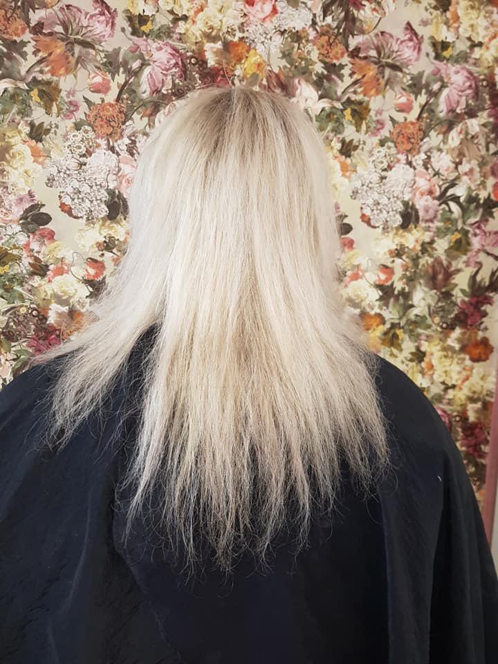 Charlene-Ward-@-Tangled-Hair-Salon-(Before)-1